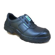 Safety shoes Dragon-2B