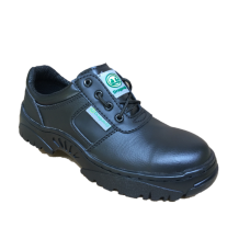 Safety shoes Dragon-2C